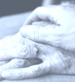 pflegezusatzversicherung kosten