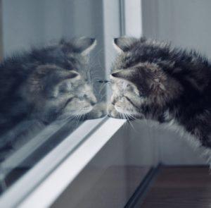 spiegelfolie test